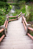 Outdoor concrete stairway path Royalty Free Stock Image