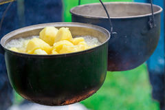 Outdoor cooking on a campfire. In summer forest. Potato in a hike Royalty Free Stock Image