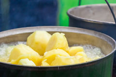 Outdoor cooking on a campfire. In summer forest. Potato in a hike Stock Photography