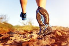 Healthy trail running stock photos