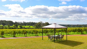 Outdoor dining area at a vineyard at Margaret River Royalty Free Stock Photo