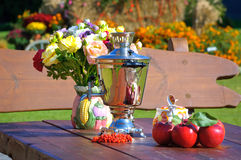 Outdoor dining table in autumn Royalty Free Stock Photos