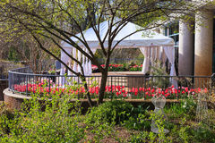 Outdoor Event Preparation. Patio tent for hosting events on the deck surrounded by spring tulips at a northern Virginia regional park Royalty Free Stock Image