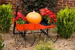 Outdoor Fall Scene Royalty Free Stock Photos
