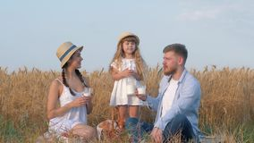 Outdoor family picnic, happy young couple with little girl child looks far away during outings with baked buns and milk. In yellow grain wheat meadow at stock footage