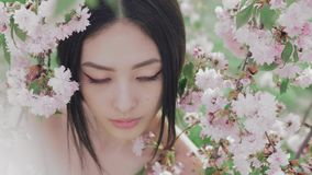 Portrait of a beautiful asian girl outdoors against spring blossom tree. stock video