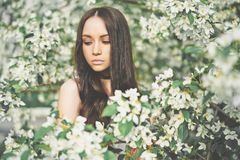 Beautiful young woman surrounded by flowers of apple-tree. Outdoor fashion photo of beautiful young woman surrounded by flowers of apple-tree. Spring blossom royalty free stock image