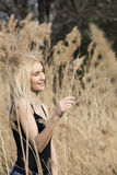 Outdoor fashion photo of young beautiful lady in autumn landscape with dry flowers Stock Images