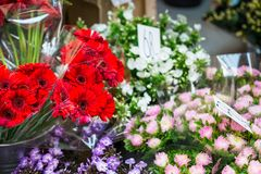 Outdoor flower market in Copenhagen, Denmark. Royalty Free Stock Photography