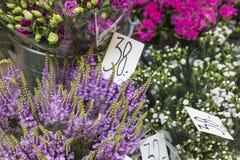 Outdoor flower market in Copenhagen, Denmark. Royalty Free Stock Photo