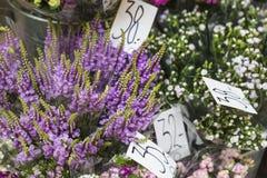 Outdoor flower market in Copenhagen, Denmark. Royalty Free Stock Photos