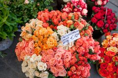 Outdoor flower market with red, orange, pink roses, in Vienna, Austria stock photos