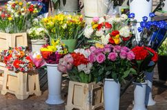 Outdoor flower market Stock Images