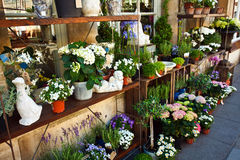 Outdoor Flower Shop Royalty Free Stock Photography