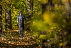 Outdoor Forest Running royalty free stock photos