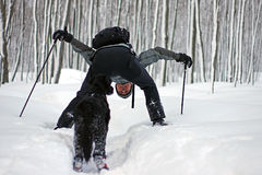 Outdoor Fun in Winter. A snowshoe enthusiast in a pristine forest with his dog after a snowfall in central Ontario Royalty Free Stock Images