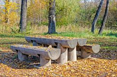 Outdoor furniture from a tree for a garden. Benches and a table royalty free stock photos