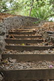 Outdoor garden steps Royalty Free Stock Photo