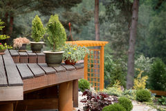 Outdoor gardening in forest Stock Images
