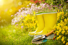 Outdoor gardening tools. And flowers Stock Photos