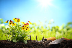 Outdoor gardening tools and flowers. Copy space for your text Stock Images