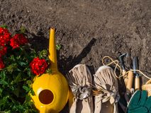 Outdoor gardening tools, geranium, watering can and boots on the soil. Copy space stock image