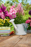 Outdoor gardening tools on old wood table Royalty Free Stock Images