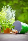 Outdoor gardening tools Stock Photos