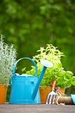 Outdoor gardening tools Stock Photo