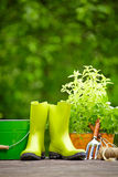Outdoor gardening tools. On wood terrace Stock Photography