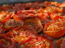 Outdoor Grilled Tomatoes Stock Images