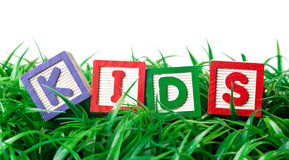 Outdoor kids. Alphabet blocks forming KIDS on a patch of grass Stock Photo