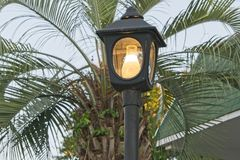 Outdoor Lamp. With Palm tree in background Royalty Free Stock Image