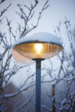 Outdoor lamp shinning Stock Photo