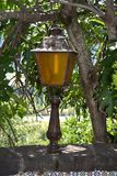 Outdoor Lamp under a Fig Tree. The glow of an outdoor lamp under a fig tree that indicates the edge of the wall overlooking a cliff adds atmosphere and safety to royalty free stock photo