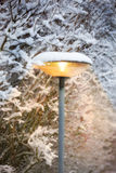 Outdoor lamp in winter Stock Photography