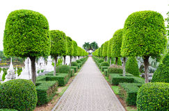 Outdoor landscape garden Royalty Free Stock Photos
