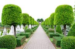 Outdoor landscape garden Royalty Free Stock Photos