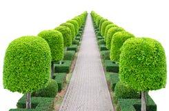 Outdoor landscape garden Stock Photos
