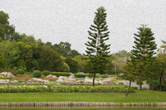Outdoor landscape garden Stock Image
