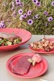 Outdoor lunch Stock Photos