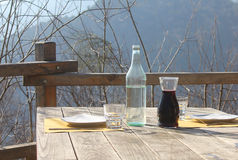 Outdoor lunch in the forest Royalty Free Stock Photos
