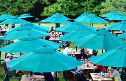 Outdoor Luncheon Blue Beach Umbrala Stock Photo