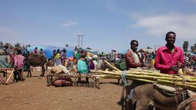 Outdoor market in Ethiopia stock video footage