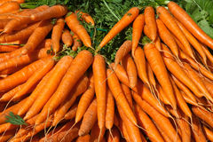 Outdoor market with fresh carrots in Paris Stock Images