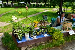 An outdoor market in Russia. On an outdoor market in a small town in Russia, local people sell the production of their home, such as flowers, honey, and fruits stock photo