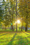 Outdoor Nature stock photography