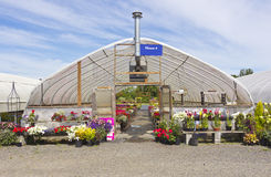 Outdoor nursery Willamette valley Oregon. Stock Images