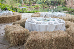 Outdoor openair celebration. Enjoy party with grassy lawn surrounded Royalty Free Stock Image