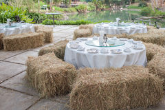 Outdoor openair celebration. Enjoy party with grassy lawn surrounded Royalty Free Stock Photography